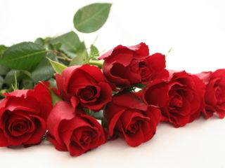 """""""Mi compri una rosa…?"""" Ricordo (triste) di Monica di Maurizio Quilici"""
